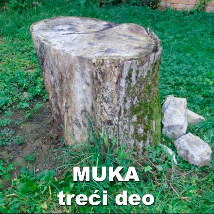 Muka (treći deo)-Ilija M. Popović – Pop